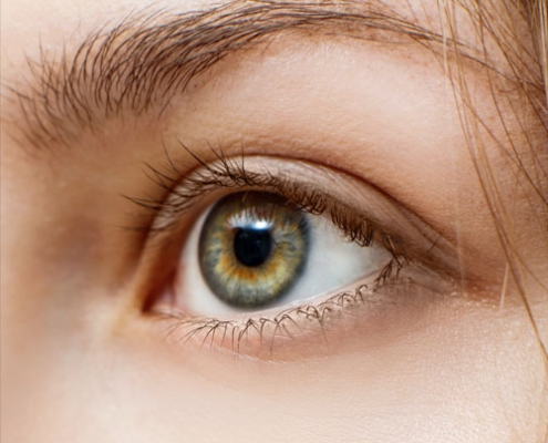 Augenbrauen-Wimpern